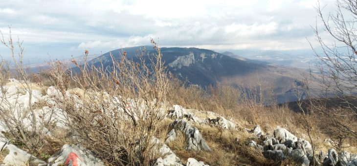 Homolje – Ježevac i banja Ždrelo