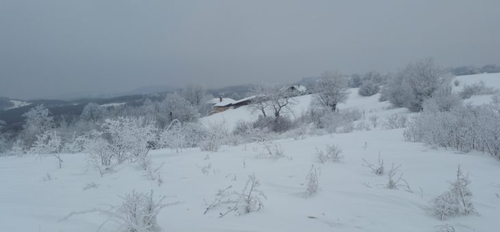 Svetosavski pohod planinara – Crni vrh Jagodina