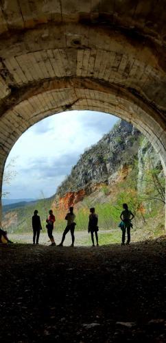 Tuneli u kanjonu Mileševke