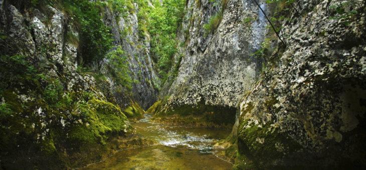 Kanjon Belice i Svrljiška klisura
