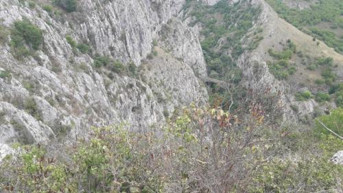 Pogled sa Kule