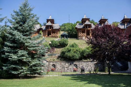 Bosna 9
